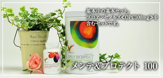 【オススメ】メンテ&プロテクト 100